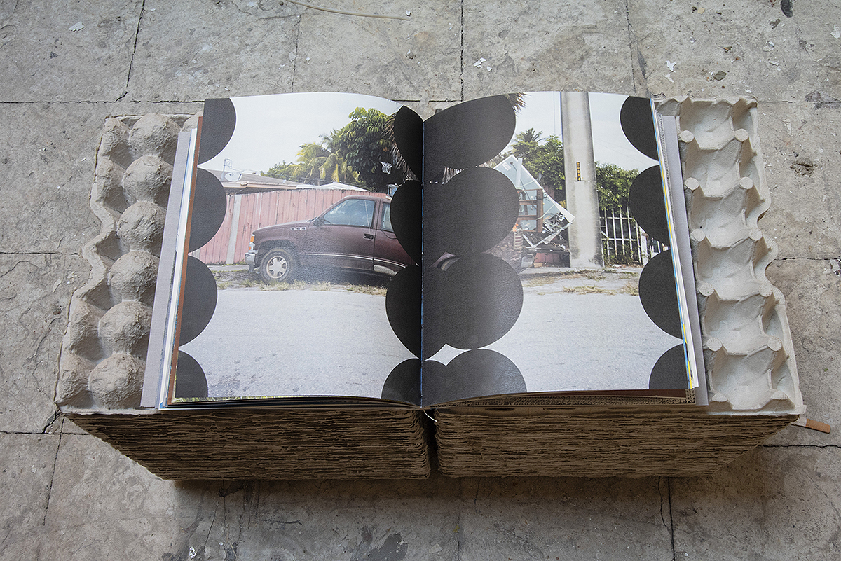 book_31