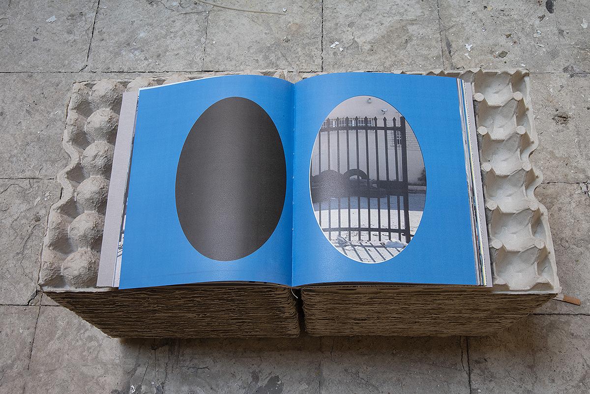 book_8